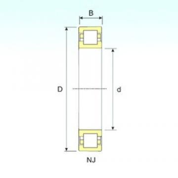 ISB NUP 248 cylindrical roller bearings